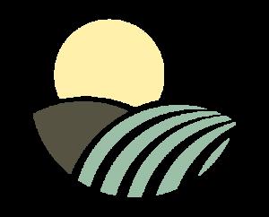 Producción plantones de olivo